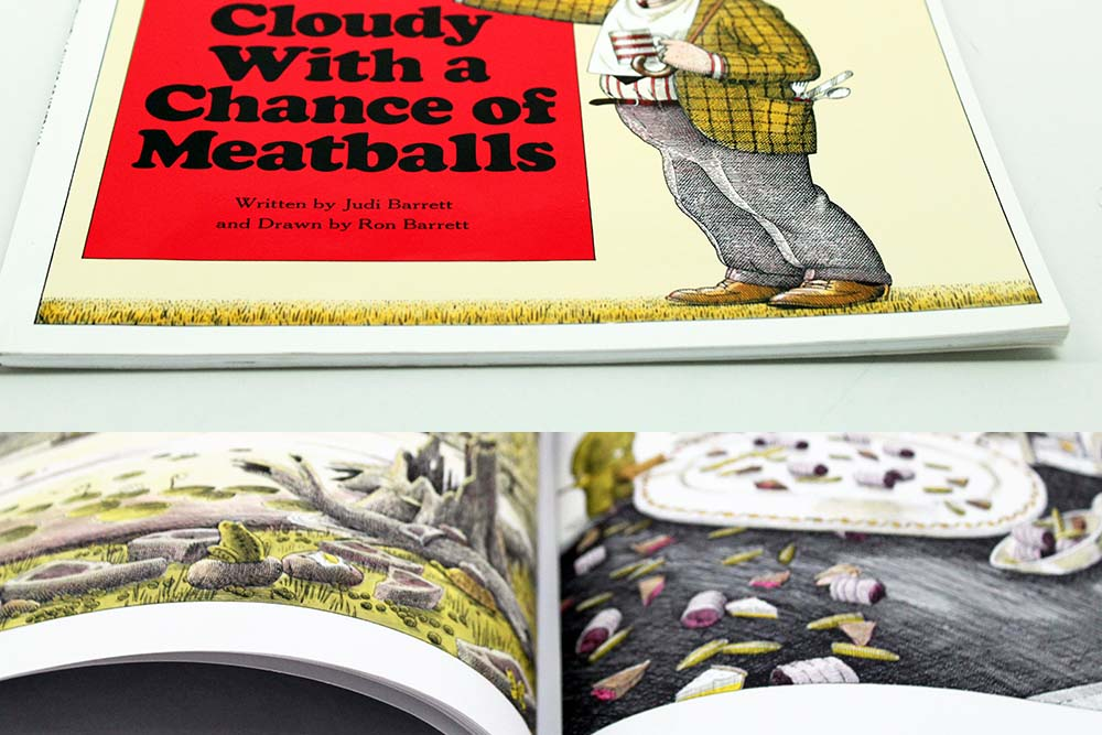 Cloudy With A Chance of Meatballs Softcover Children's Book Example and Specifications Based on Industry Standards